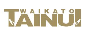 WT Gold Logo